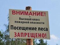 Власти Забайкалья снова ввели запрет на посещение лесов с 5 июля