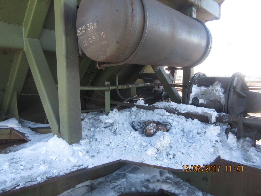 ВЗабайкалье пограничники отыскали упассажира поезда неменее 40 медвежьих лап