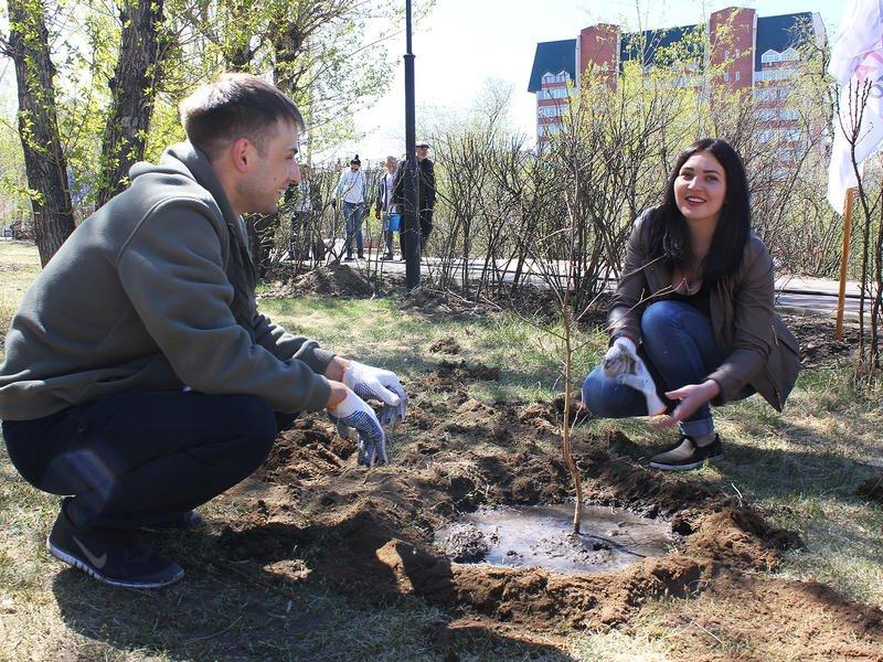 Озеленение площади Декабристов