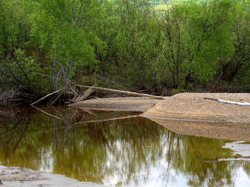 Выход рек Ингоды и Читинки возможен в июле