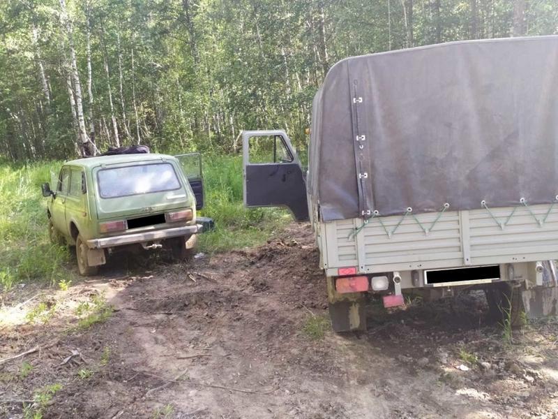Лесничие поймали с поличным группу «черных» лесорубов в Забайкальском крае