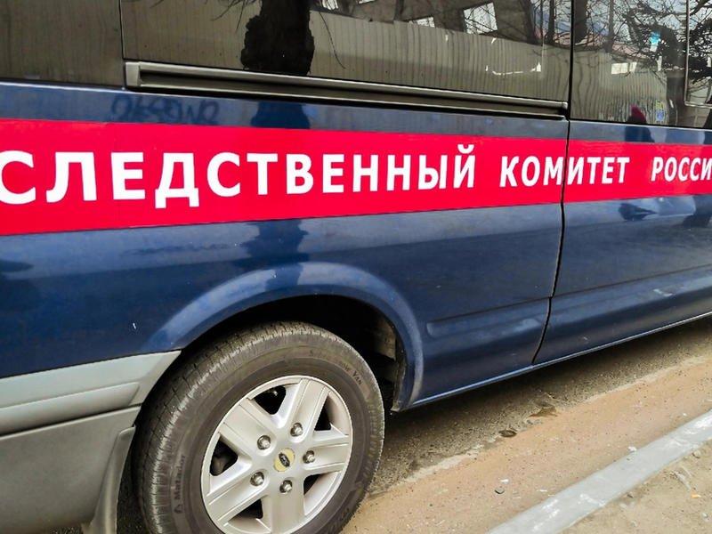 По факту нападения собаки на ребёнка в Приаргунском районе заведено уголовное дело