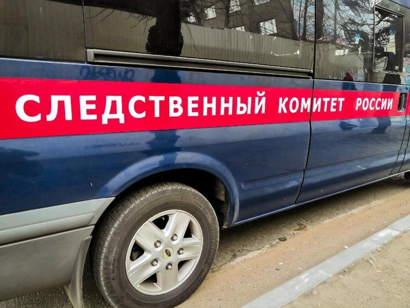 Следователи начали проверку по информации о подстреленной школьнице в Краснокаменске