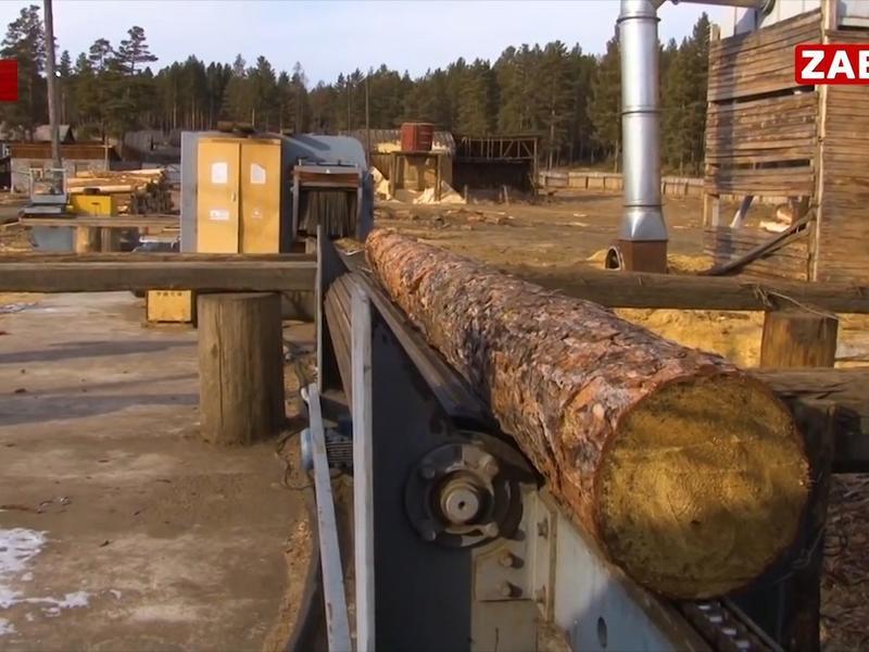 Юрий Трутнев: Много вопросов к Министерству промышленности и агентству лесного хозяйства