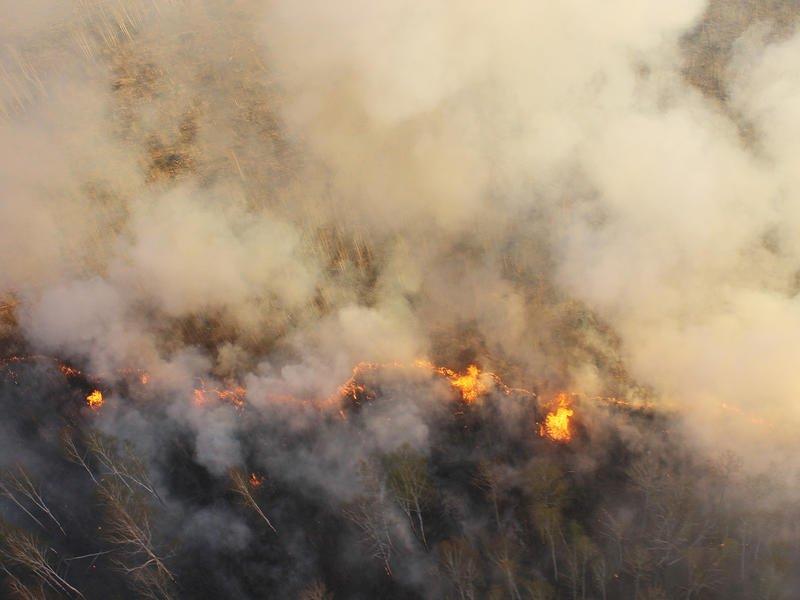 Бе-200ЧС на тушении пожара в Чернышевском районе