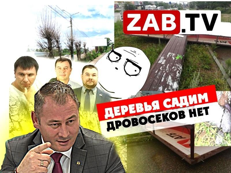 Рекламные войны: деревья посадим, а виновных пока нет — ZAB.TV