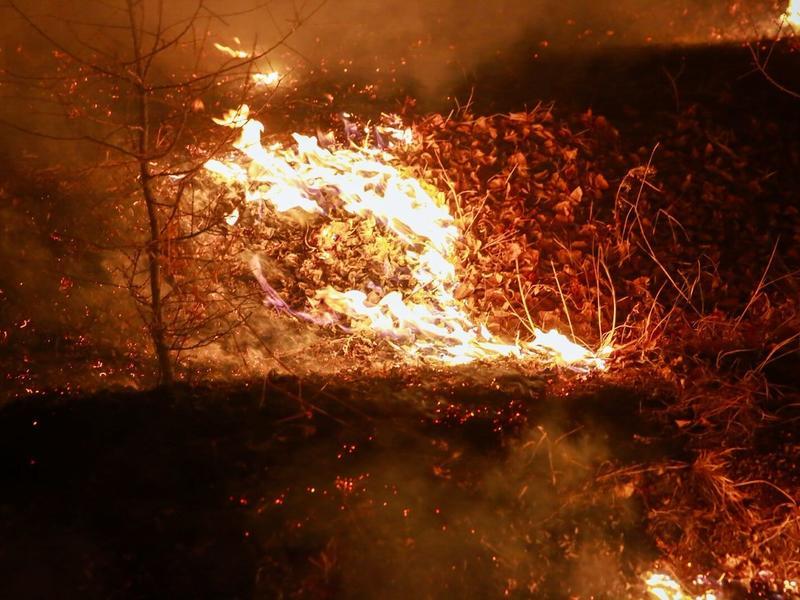 Прокуратура начала проверку по факту гибели 7-летнего ребёнка на пожаре в селе под Читой