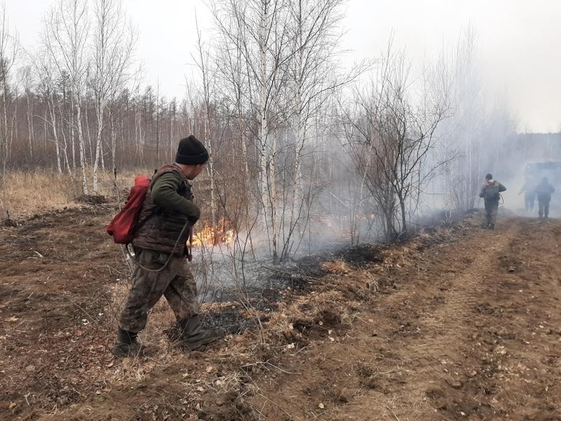 Рыбаки не затушили костер и устроили лесной пожар в Акшинском районе Забайкалья