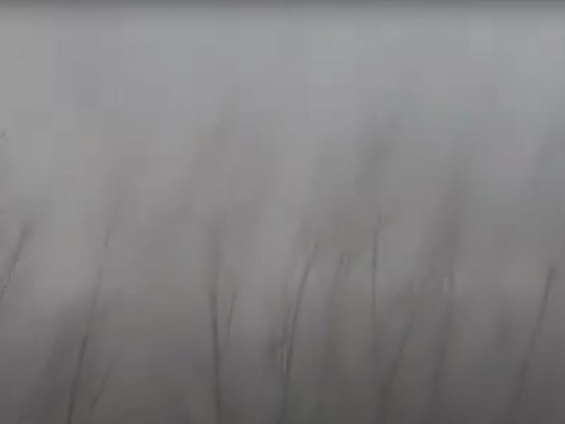 Жительница посёлка в Забайкалье показала последствия шторма