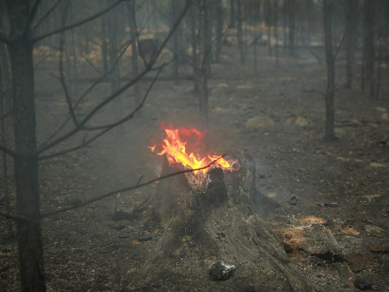 Жителей районов Забайкалья предупредили о повышенной пожароопасности