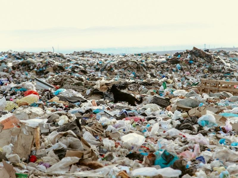 В России предложили рекультивировать мусорные полигоны за счёт населения