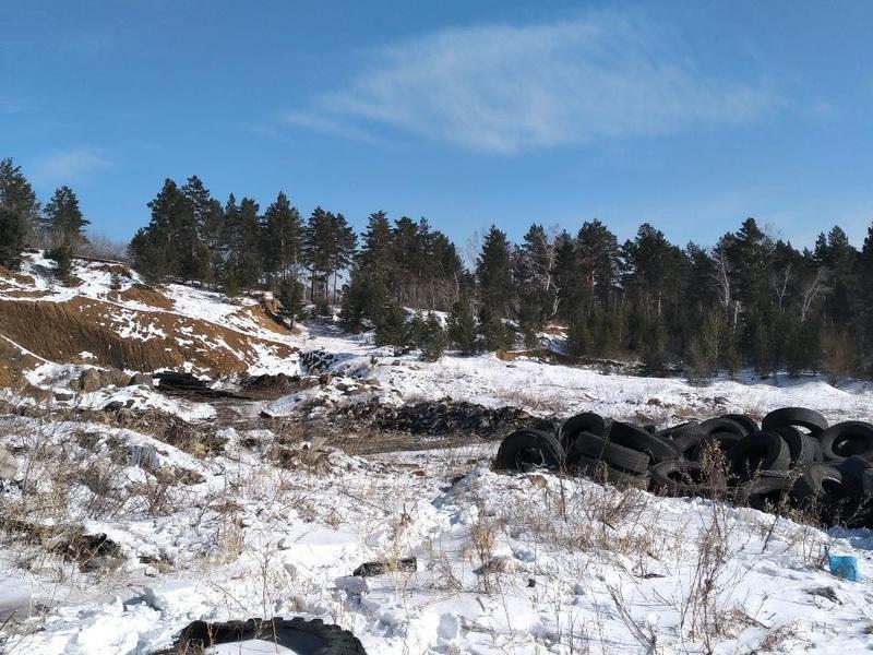 Власти решили сжечь более 2 тысяч голов свиней в поселке Ивановка в Забайкалье