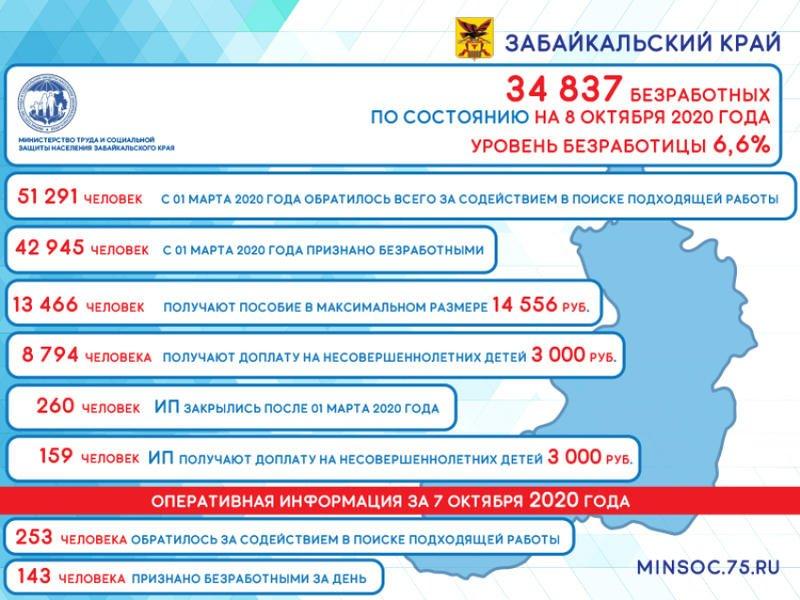 Число безработных забайкальцев уменьшилось на 280 человек — Минсоц