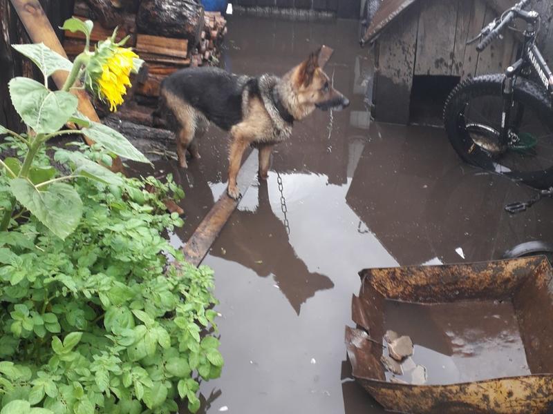 Ливневые воды заняли дворы жилых домов в посёлке Рудник Кадала