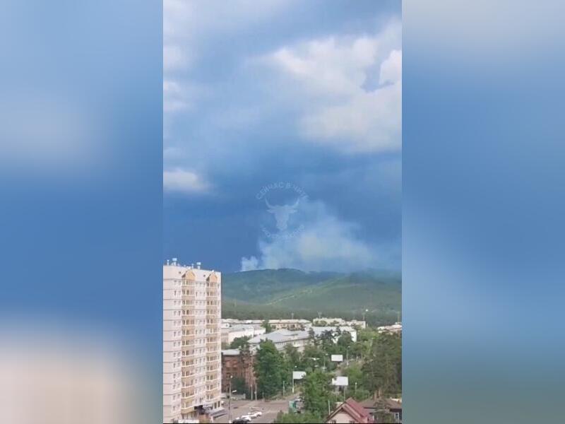 Лесной пожар площадью 3 гектара тушат рядом с Читой