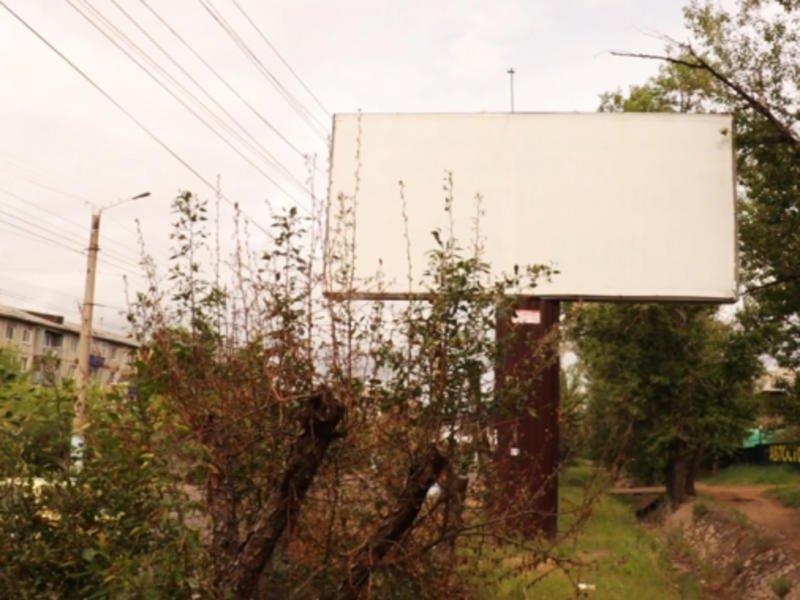 Что послужило причиной уничтожения деревьев рядом с рекламными конструкциями — ZAB.TV
