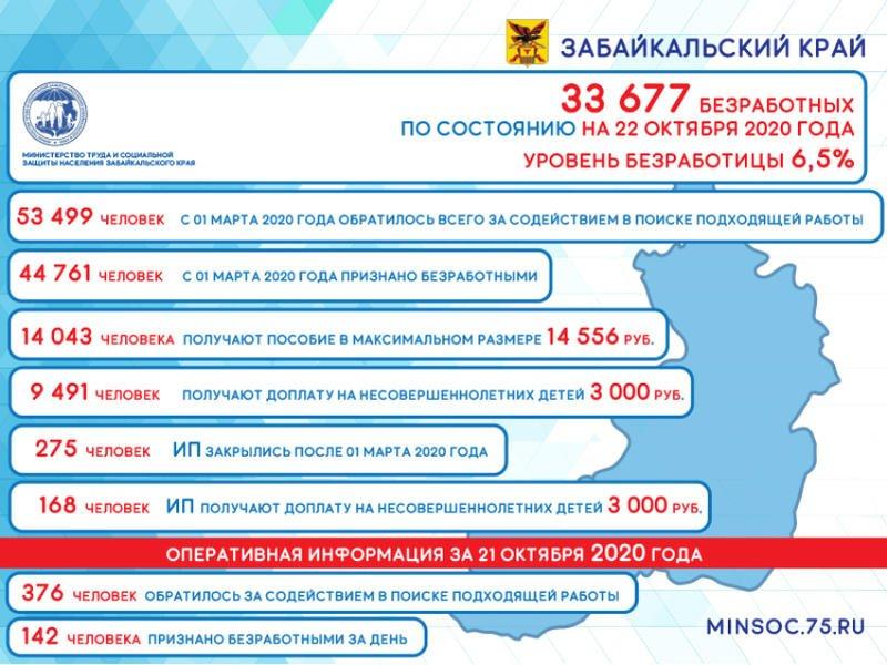 Число безработных забайкальцев уменьшилось на 565 человек за неделю  — Минсоц