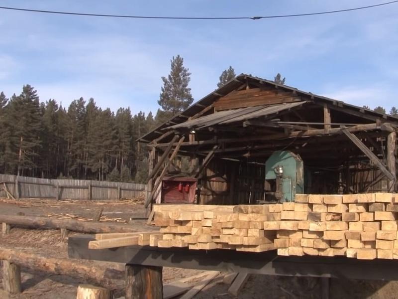 Российская компания вывезла свыше тысячи кубометров леса в Китай из Забайкалья