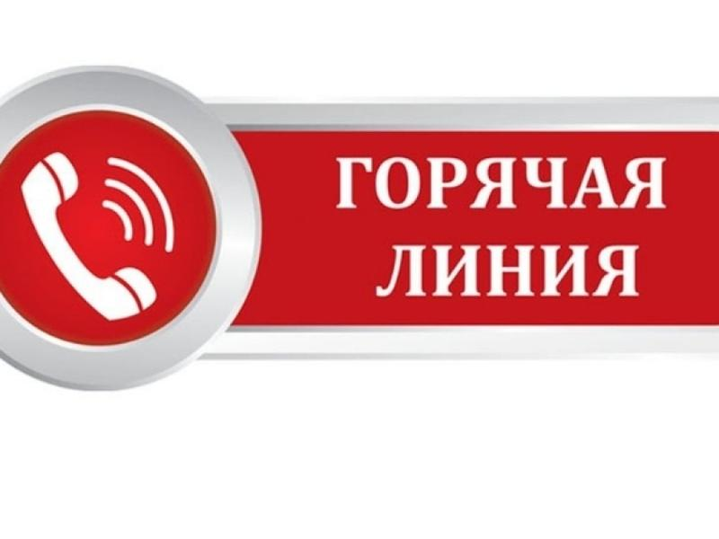 Открыта горячая линия по бесплатному питанию младшеклассников в Забайкалье