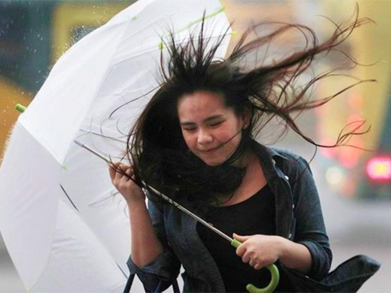 Картинки с ветром в воскресенье