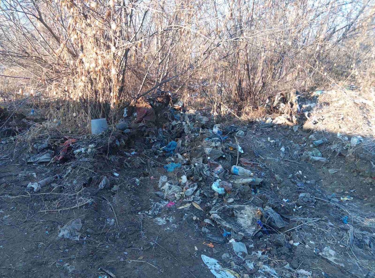 В первые два дня уборки свалки за Ингодой было вывезено 560 кубометров мусора